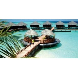 Sun Island Resort& Spa 4*