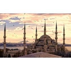 ISTANBUL - Avion 5 zile
